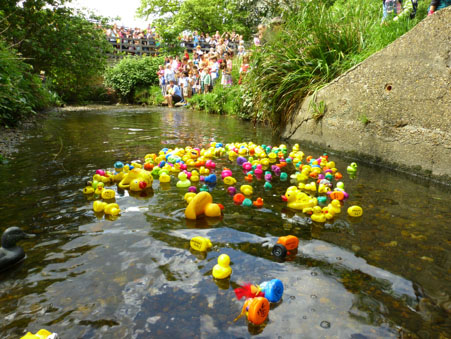 Record breaking Quaggy Duck Race