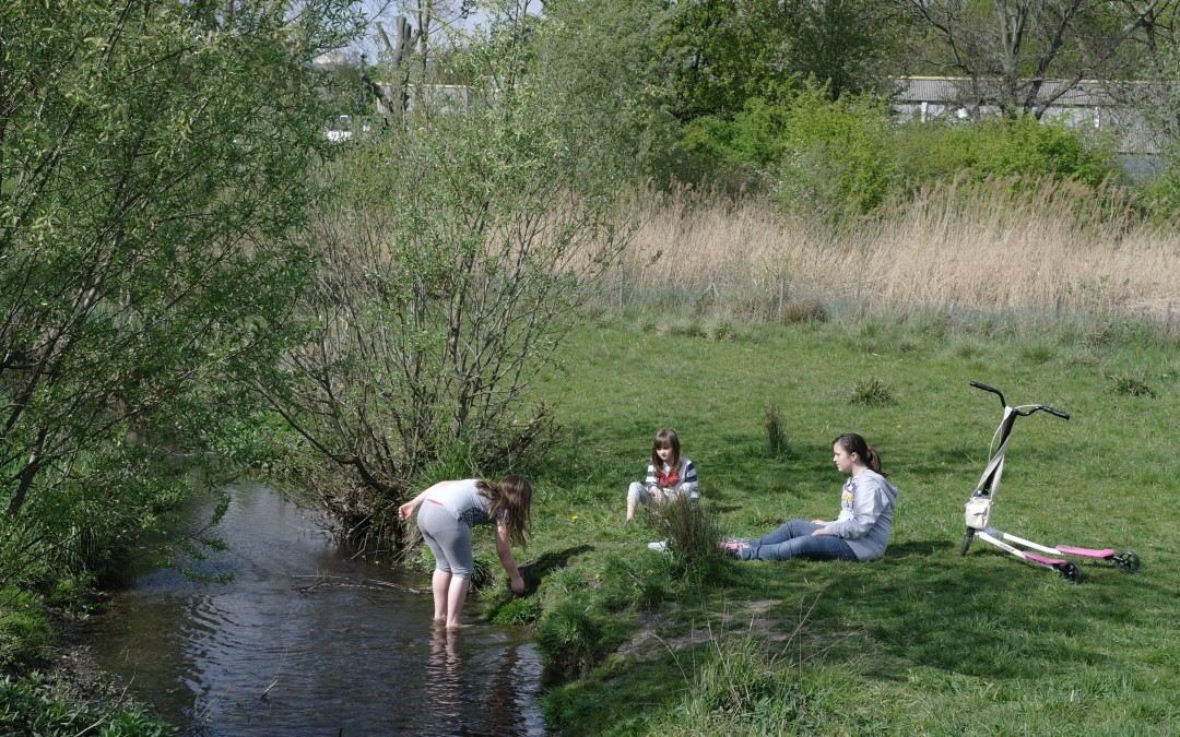 Sutcliffe Park revisited (2011)