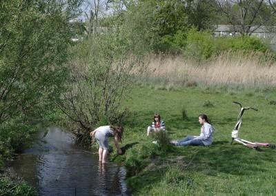 Sutcliffe Park revisited