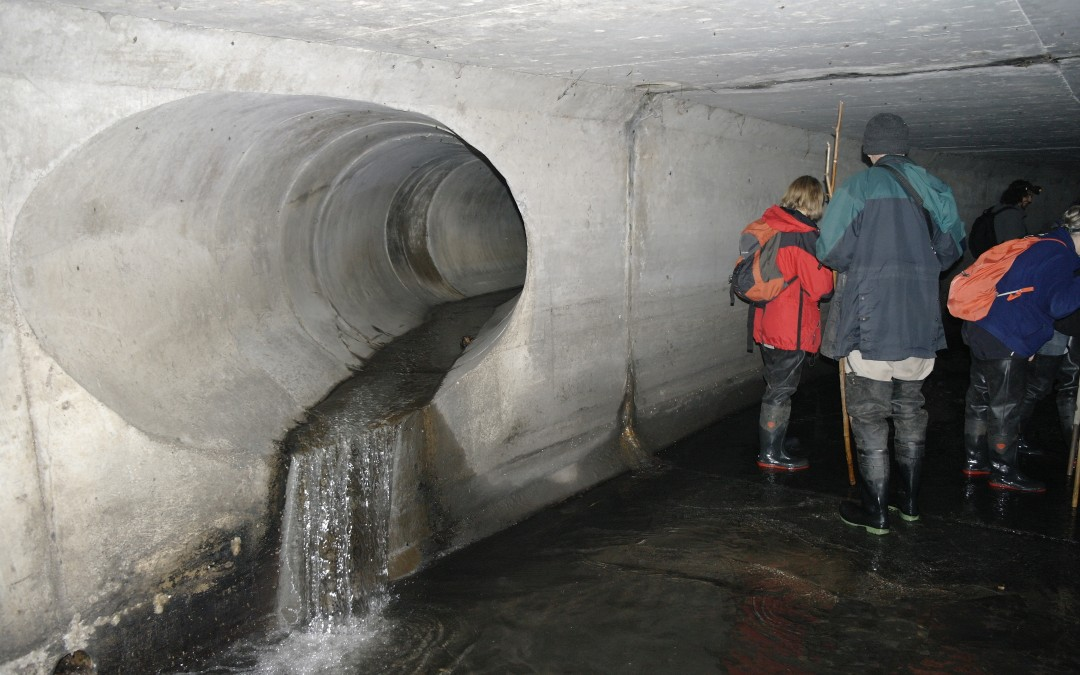 Filming in an underground culvert of the River Quaggy