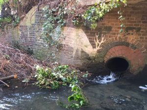 Qwag meeting – In search of River Quaggy's tributaries – 15th November 2017