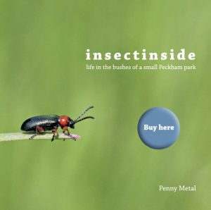 insectinside book